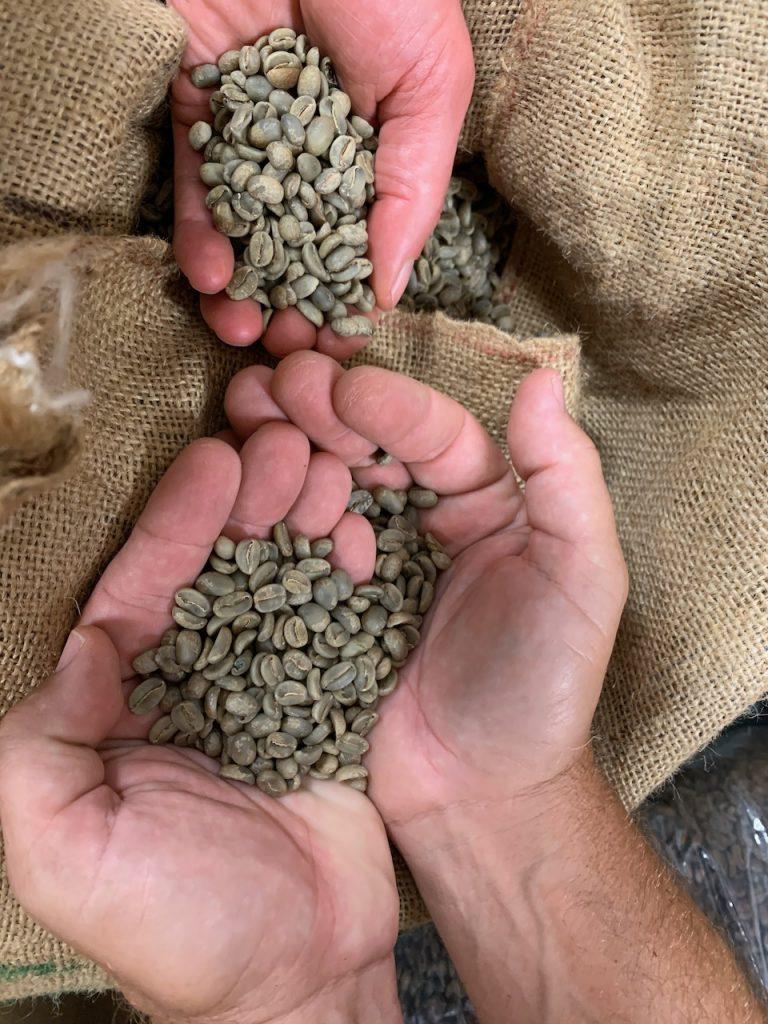 Prime grade beans are shown in comparison to the top three grades.