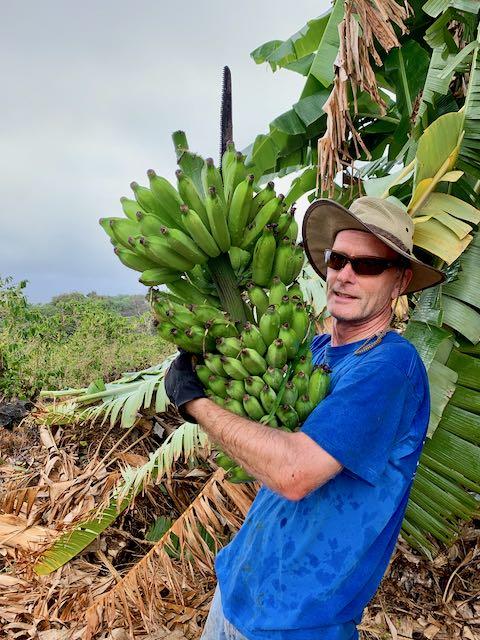 Rune holding bananas